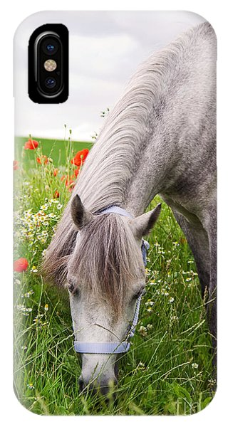 Lulu And The Poppies  IPhone Case