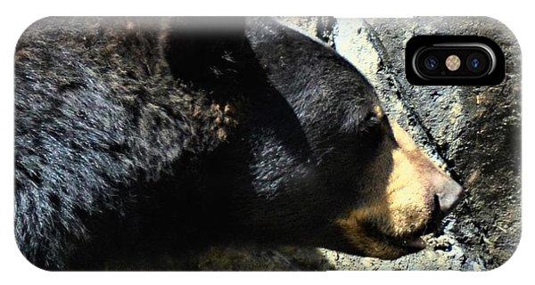 Lumbering Bear IPhone Case