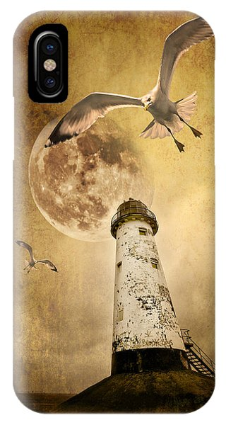 Seagull iPhone Case - Lunar Flight by Meirion Matthias