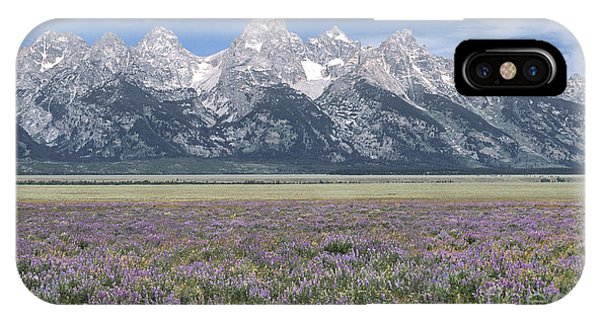 Teton iPhone Case - Lupine And Grand Tetons by Sandra Bronstein