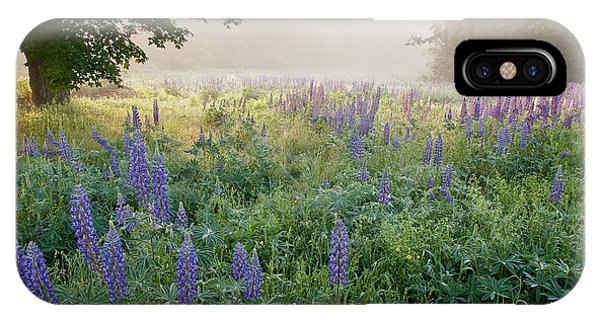 Lupine Field IPhone Case
