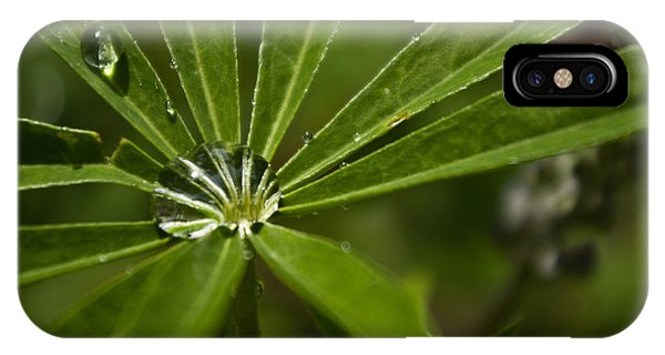 Lupine Leaf IPhone Case