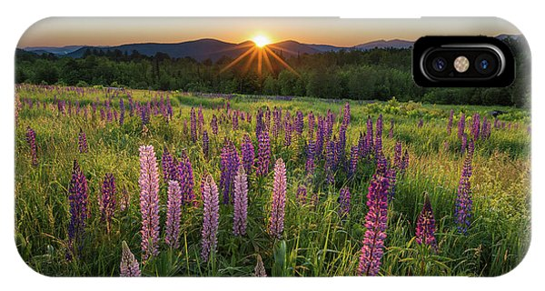 Lupine Sunrise IPhone Case