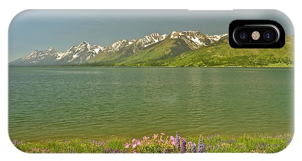 Lupines In The Tetons IPhone Case