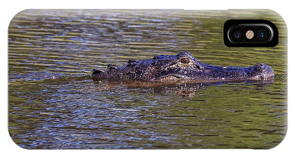 Lurking Alligator IPhone Case