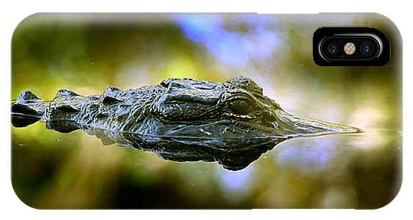Lurking Gator IPhone Case