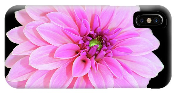 Luscious Layers Of Pink Beauty IPhone Case