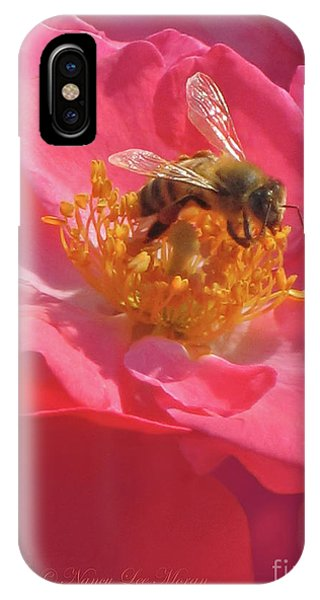 Analogous Color iPhone Case - Luscious Rose With A Bee by Nancy Lee Moran