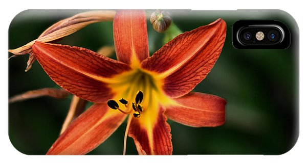 Luscious Tiger Lily IPhone Case