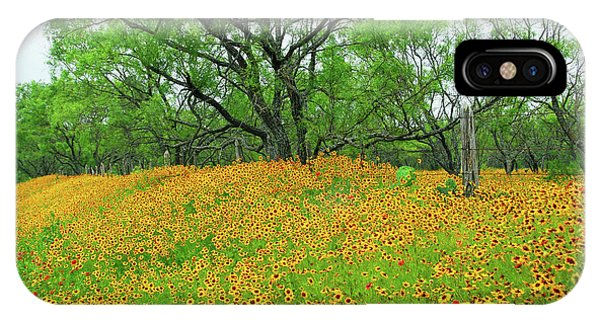 Lush Coreopsis IPhone Case