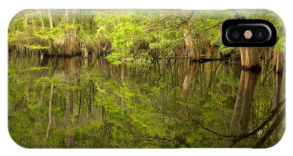Lush Green Reflections At Manatee Springs IPhone Case