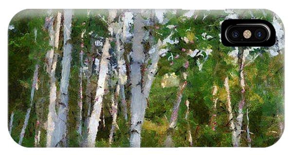 M-22 Birches IPhone Case