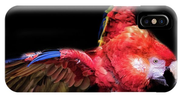 Macaw iPhone Case - Macaw by Martin Newman