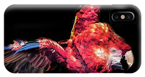 Macaw iPhone Case - Macaw Parrot by Martin Newman