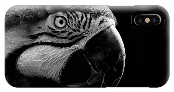 Macaw Parrot Portrait Black And White IPhone Case