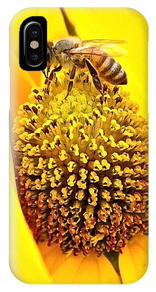 Macro Bee IPhone Case