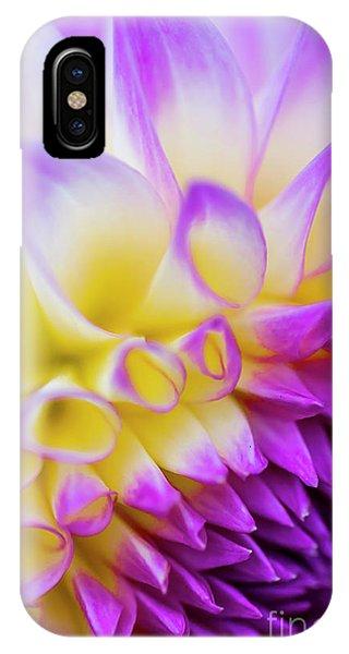 Macro Dahlia IPhone Case