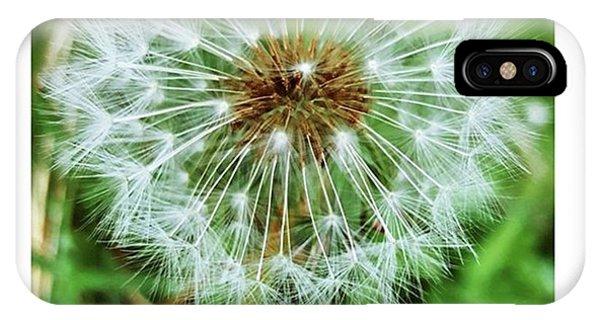 #macro #dandelion #dandelionclock Phone Case by Natalie Anne
