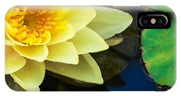 Macro Image Of Yellow Water Lilly IPhone Case