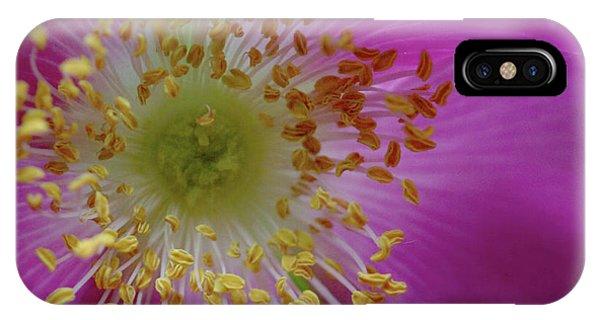 Macro Rosehip Bloom IPhone Case