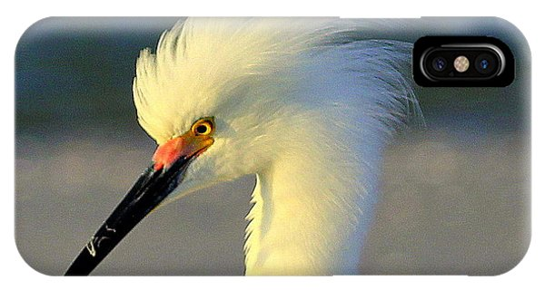Mad Egret IPhone Case