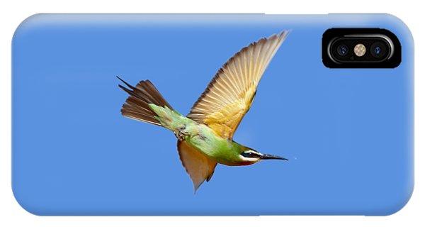 Madagascar Bee-eater T-shirt IPhone Case