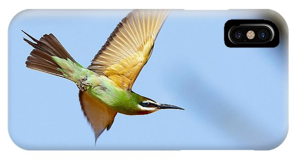 Madagascar Bee Eater In Flight IPhone Case