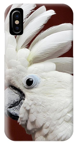 Maggie The Umbrella Cockatoo IPhone Case
