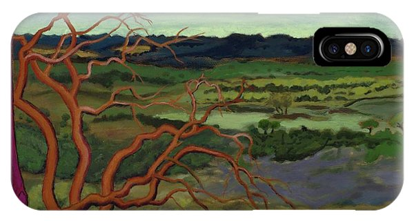 Magic Trees Of Wimberley IPhone Case