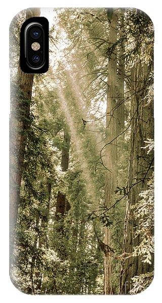 Magical Forest 2 IPhone Case