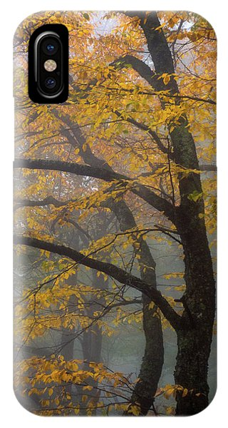 Magical Forest Blue Ridge Parkway IPhone Case