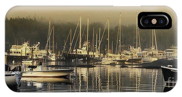 Magical Light Of Mt Desert Island Phone Case by T-S Fine Art Landscape Photography