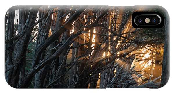 Half Moon Bay iPhone Case - Magical Morning Light by Alexander Davidovich