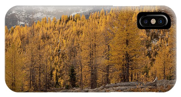 Magnificent Fall IPhone Case