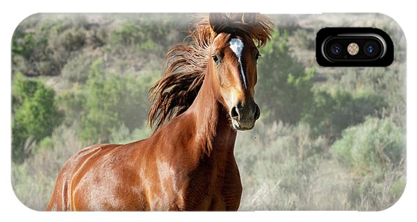 Magnificent Mustang Wildness IPhone Case
