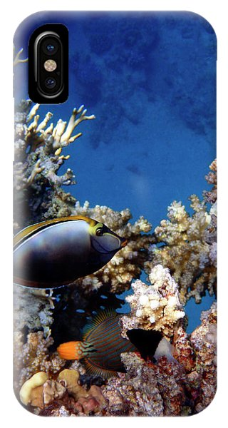 Magnificent Red Sea World IPhone Case