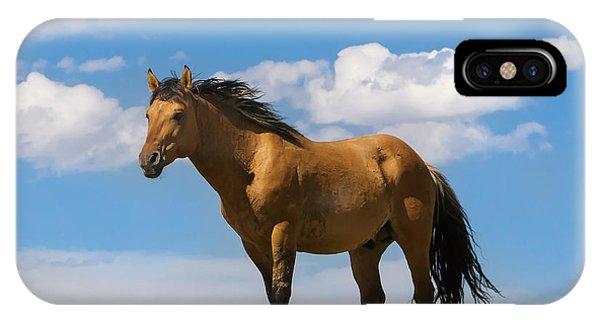 Magnificent Wild Horse IPhone Case