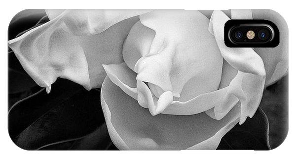 Magnolia Bloom IPhone Case