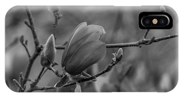 Magnolia Bw Blooms Buds Branches IPhone Case