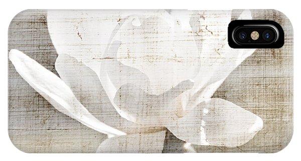 iPhone Case - Magnolia Flower by Elena Elisseeva
