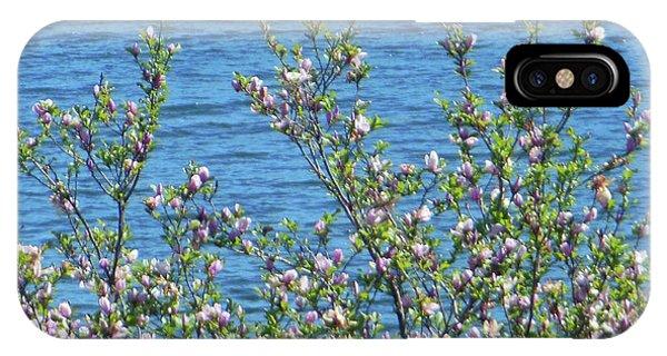 Magnolia Flowering Tree Blue Water IPhone Case