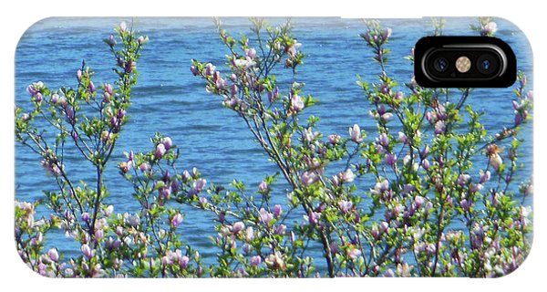 Magnolia Flowering Tree Blue Water IPhone Case