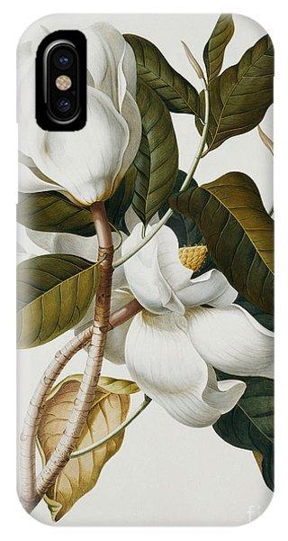 Horticulture iPhone Case - Magnolia by Georg Dionysius Ehret