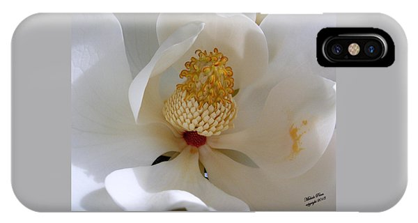 Magnolia Happiness IPhone Case