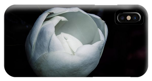 Magnolia In The Spotlight IPhone Case