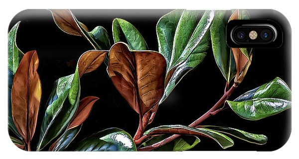 Magnolia Leaves IPhone Case