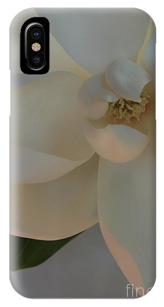 Moody Magnolia  IPhone Case