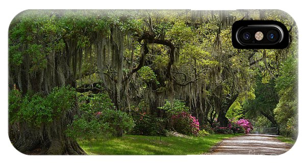 Magnolia Plantation And Gardens IPhone Case