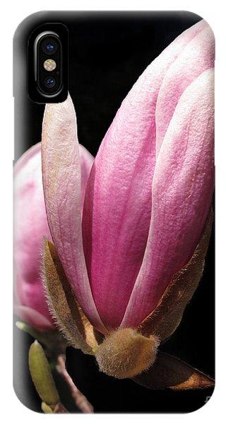 Magnolia Tulip Tree Blossom IPhone Case