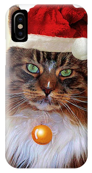 IPhone Case featuring the photograph Maine Coon Xmas by Roger Bester